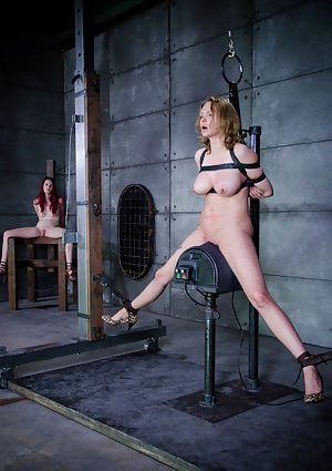 Sybian galleries