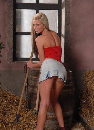 Farm galleries