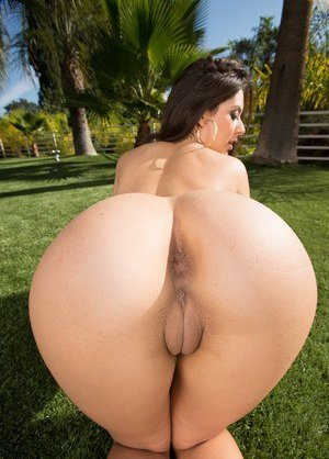 Pornstar Porn galleries