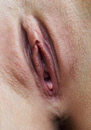Close Up Porn galleries